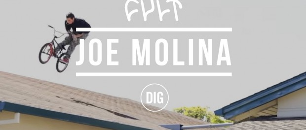 Joe Molina – Cult X DIG BMX
