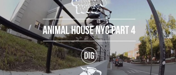 Animal House NYC – Part 4 – Affiliates, AM's and OG's