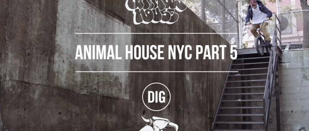Animal House NYC – Part 5 – Matt Miller, Dan Lacey & More…