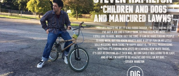 Steven Hamilton – Children and Dogs and Manicured Lawns