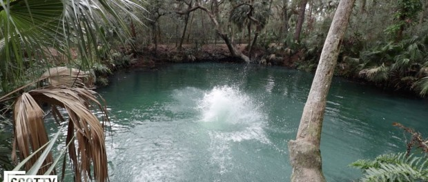 JUMPING INTO GATOR INFESTED SULFUR WATER!