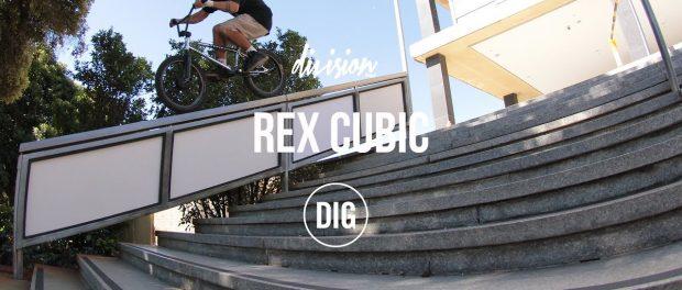 Division Brand – Rex Cubic 2017