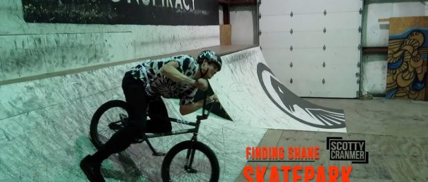 FINDING SHANE AND PAIN AT THE SKATEPARK!