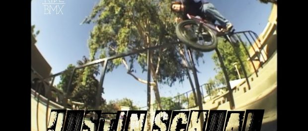 JUSTIN SCHAUL – YEAR OF THE VX