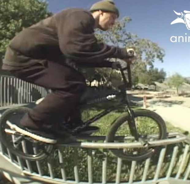 """TREV """"MAGS"""" WELCOME TO ANIMAL BIKES (BMX)"""