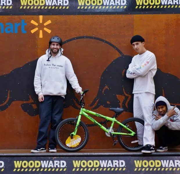 $80 Walmart BMX Bike VS Woodward