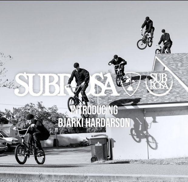 Bjarki Hardarson – Welcome to the Team