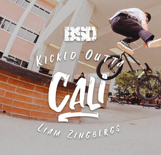 BSD BMX –  Liam Zingbergs – Kicked Outta Cali