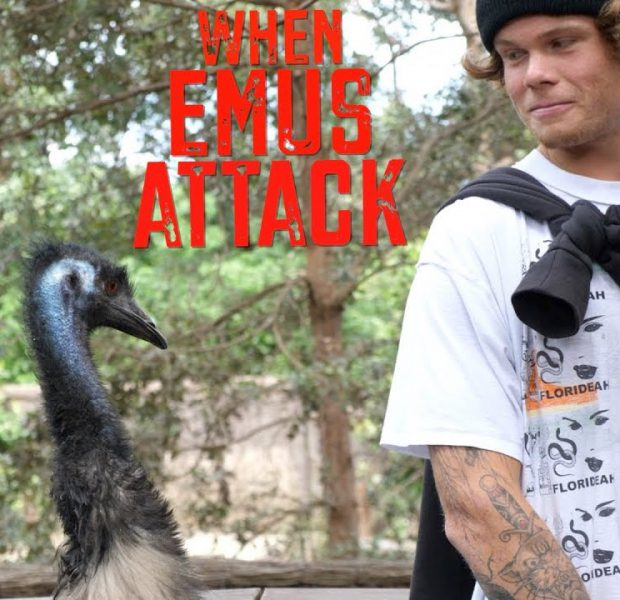 Big Boy vs. Emu – Last Day In Australia!