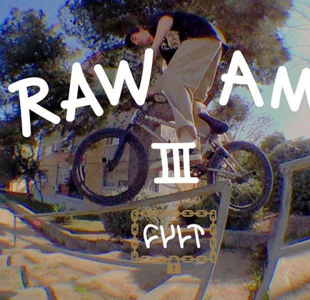 CULTCREW/ RAW AMS 3