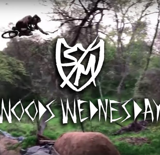 Woods Wednesday – Episode 2