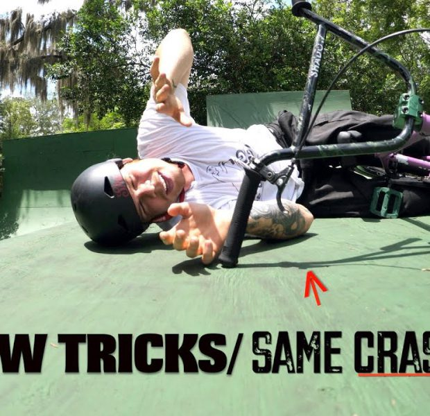 Teaching Big Boy An Impressive New Trick On His Backyard Ramp!