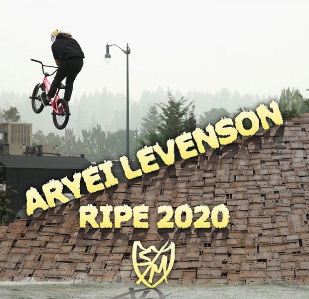 S&M BMX – 14 year old Aryei Levenson's 2020 part!